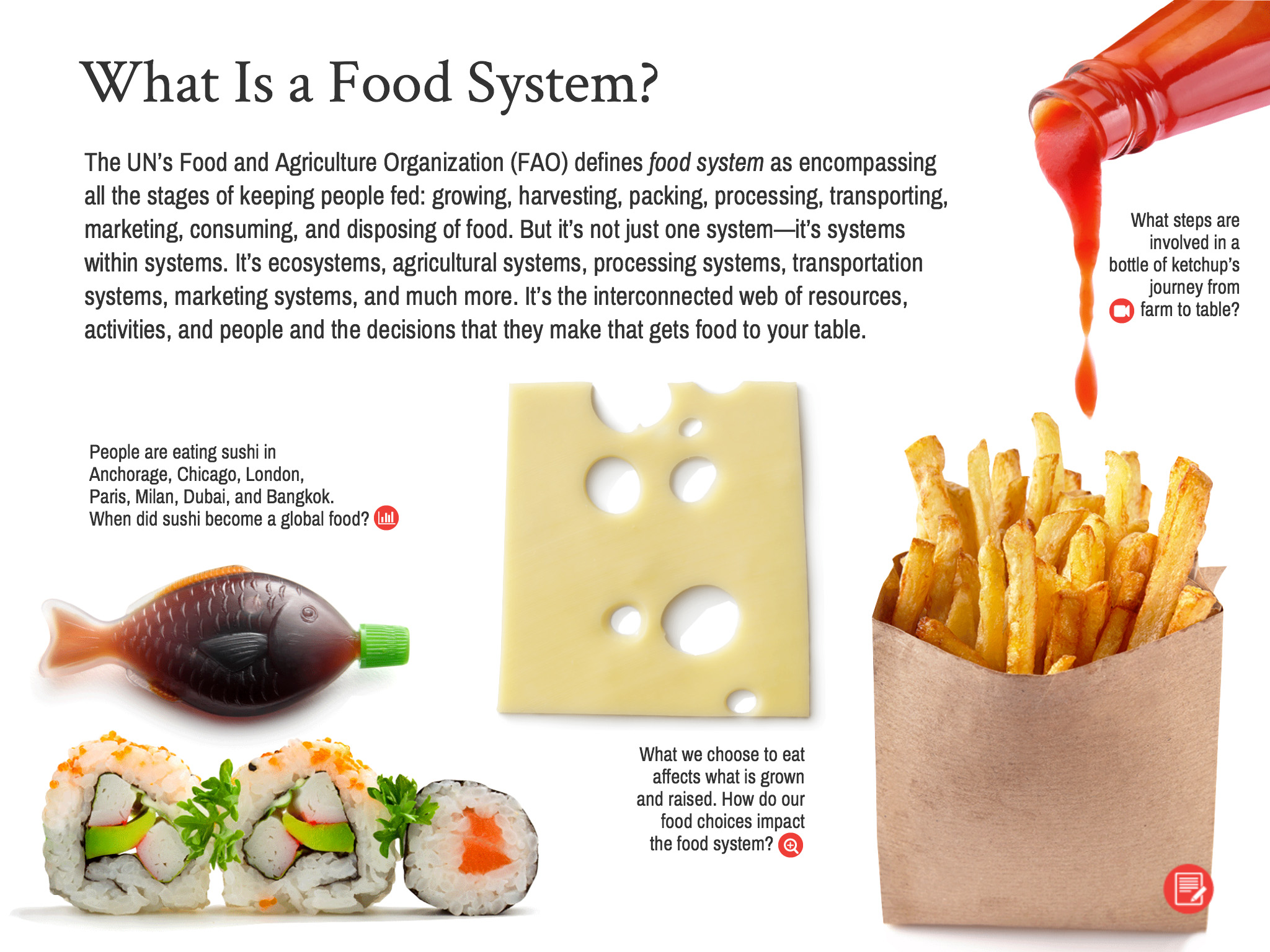 Food and Climate Change Interactive Guide Sample Page