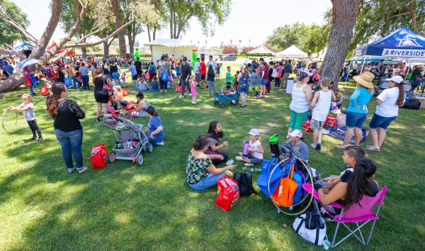 Build Regional Support for Summer Meals