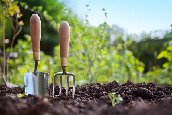 Creating Gardens of Goodness