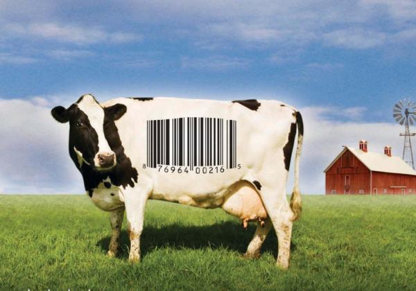 Food, Inc. Discussion Guide