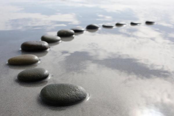 Sept leçons sur les changements systémiques à l'intention des gestionnaires