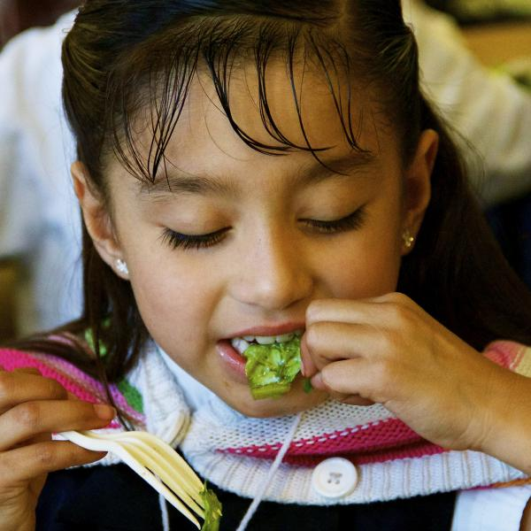 School Lunch Initiative Evaluation