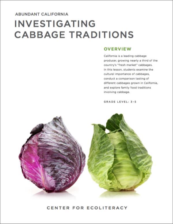 Abundant California Cabbage