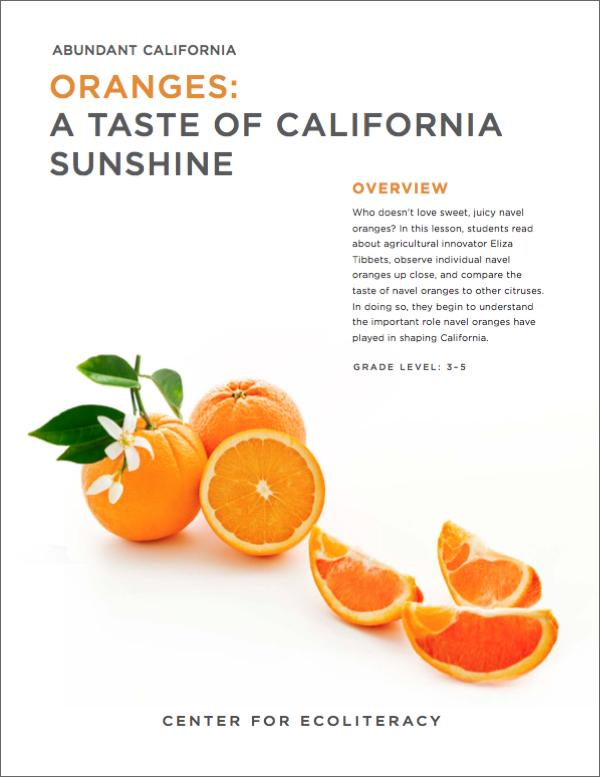 Abundant California Oranges