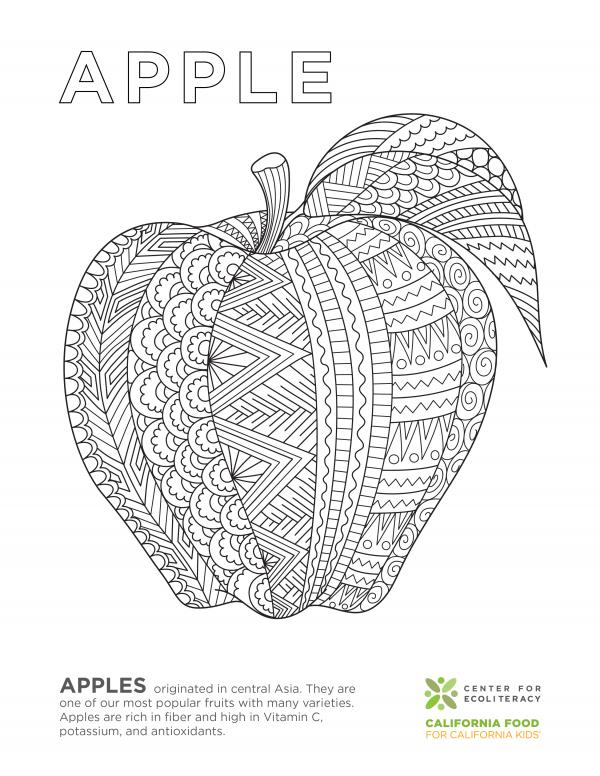 coloring_page_apple.jpg