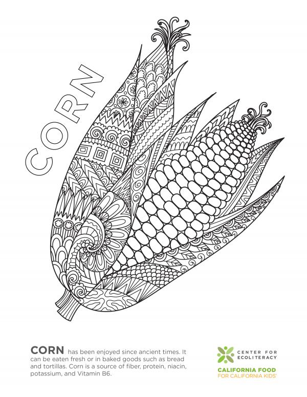 coloring_page_corn.jpg