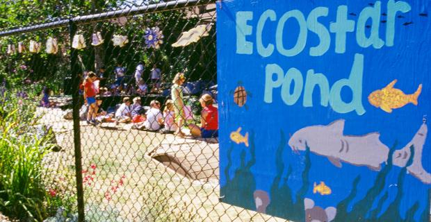 EcoStars: Enabling Students to Become Environmental Stewards