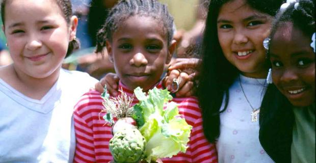 Food Systems, Climate Change, and Ecological Education