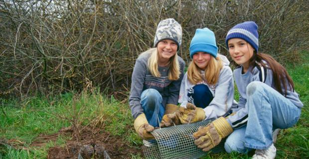 straw students and teachers restoring a watershed