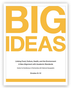 Big Ideas: A New Alignment with Academic Standards