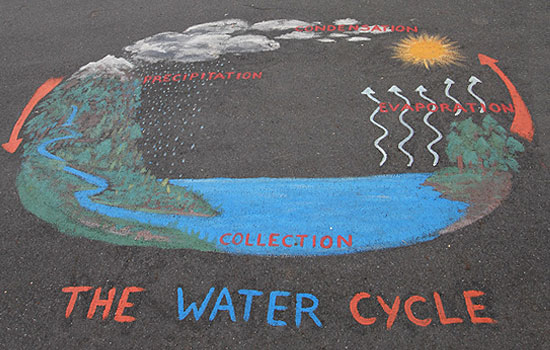 Water Cycle School Project